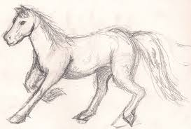 gallery running horse sketches drawing art gallery