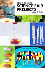 2747 best images about homeschool science on pinterest