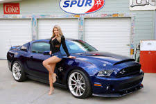 2010 mustang shelby gt500 for sale ford mustang shelby gt 500 ebay