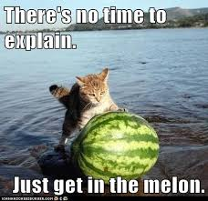 No Time To Explain Meme - there s no time to explain just get in the melon pets
