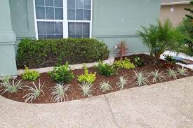 Plants For Front Yard Landscaping - tropical plants and trees for front yard landscape design