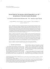 bureau de recherches g logiques et mini es collections of the history museum pdf available