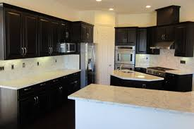 Ready To Install Kitchen Cabinets by 2 Raised Panel Kitchen Cabinets Ready To Install In Days