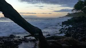 Hawaii travel trunks images Sea tree trunk shore beach wave motion splashing sunset nature png