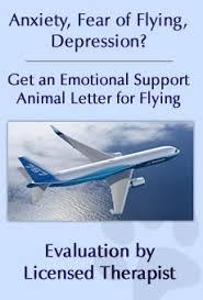emotional support animal center faq