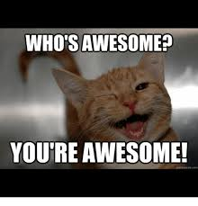 Your The Best Meme - 25 best memes about whos awesome whos awesome memes