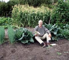 114 best organic gardening tips u0026 solutions images on pinterest