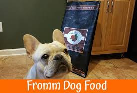 dino vite reviews dog food brands archives us bones