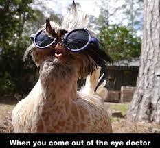Eye Doctor Meme - after eye doctors check up meme guy