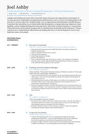 Hr Consultant Resume Sample by Executive Consultant Resume Samples Visualcv Resume Samples Database