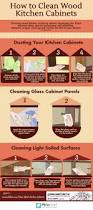 how to clean wood kitchen cabinets visual ly