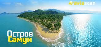 Buffet Star 402 Photos U0026 by остров самуи чем удивит популярный курорт тайланда Aviascan
