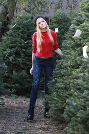 mcnamara christmas tree shopping in los angeles december 2014