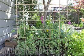 Trellis Poles Building A Garden Trellis Garden Ideas U0026 Designs