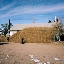 tumbleweed one photographer u0027s mission to capture america u0027s tumbleweed