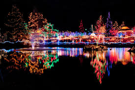 cincinnati festival of lights top festival of lights cincinnati zoo f89 in stylish collection with