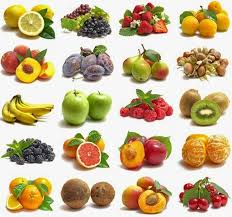 example of fruits examplesof net