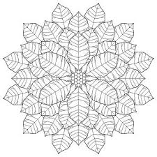 poinsettia coloring pages 44 best coloring pages images on pinterest coloring books