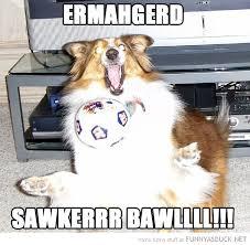 Ermahgerd Animal Memes - ermahgerd animals dog animal playing ball ermahgerd soccer