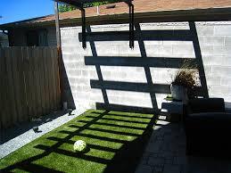 Define Backyard Low Chow Backyard