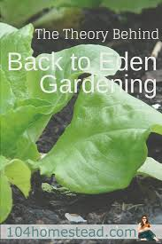 chicken manure vegetable garden the theory behind back to eden gardening