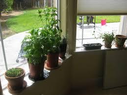 Indoor Kitchen Garden Ideas Indoor Garden Ideas Garden Ideas