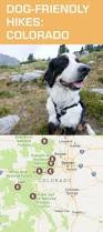 356 best hiking with dogs images on pinterest hiking dog travel