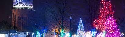 Detroit Zoo Wild Lights Index Of Wp Content Uploads Files Amandagettgen 2014 12
