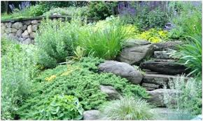 Rock Gardens On Slopes Steep Slope Garden Gardens By Landscape Traditional Landscape