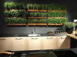 indoor herb garden wall wall indoor herb garden adding an indoor herb garden gallery
