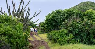 hiking mustique