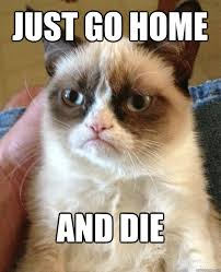 Go Die Meme - just go home and die cat meme cat planet cat planet