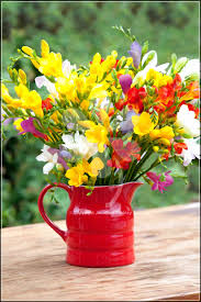 freesia flower freesia flower meaning and symbolism for 7th wedding anniversary
