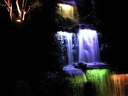 file lit waterfall and lit tree trunks in pukekura park festival
