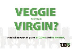 veggie virgin vegetable planting guide calendar by zone and month