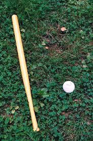 Play Backyard Baseball 2003 33 Best Backyard Baseball Images On Pinterest Backyard Baseball