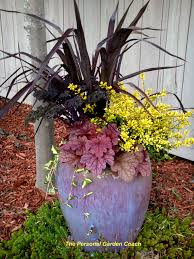 Plant Combination Ideas For Container Gardens Gardening In Containers