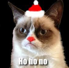 Grumpy Cat No Meme - hate the holidays with the grumpy cat internet meme socialeyezer