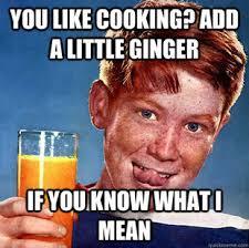 Ginger Memes - ginger meme google search ode to ginger pinterest ginger