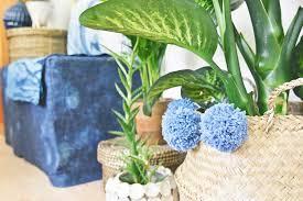 grünpflanzen im schlafzimmer grünpflanzen im schlafzimmer home image ideen