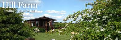 Isle Of Wight Cottages by Hill Farm Lodge Self Catering Cottage On The Isle Of Wight Isle