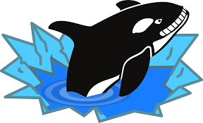 clipart evil orca cartoon looking and smiling with teeth