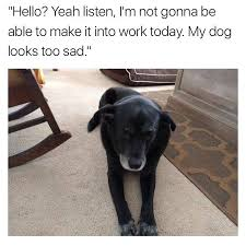 Sad Dog Meme - i m not gonna be able to make it into work today my dog looks too