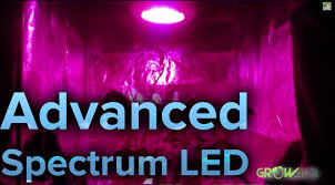 review 450w led advance spectrum max modular grow light youtube