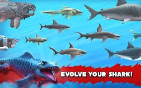 Hungry Shark Map Tải Game Hungry Shark Evolution Cá Mập Săn Mồi