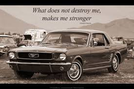 mustang car quotes ford mustang quotes