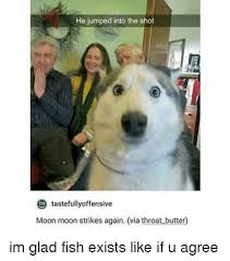Moon Moon Meme - he jumped into the shot tastefully offensive moon moon strikes again