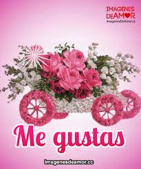 imagenes de amor con rosas animadas 7 imágenes de flores con movimiento y brillo para descargar