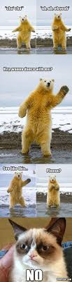 Bear Stuff Meme - funny a collection of ideas to try about humor animal pictures