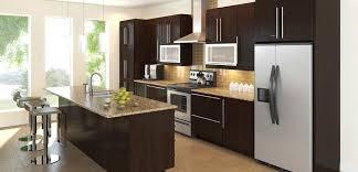 Rona Kitchen Design Modern Kitchen New Modern Home Depot Kitchen Design Rta Cabinet